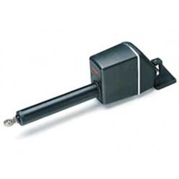 Raymarine Type 2/12v Long Shaft Linear Drive